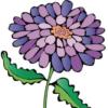 free-gift-sonship-Flower.jpg